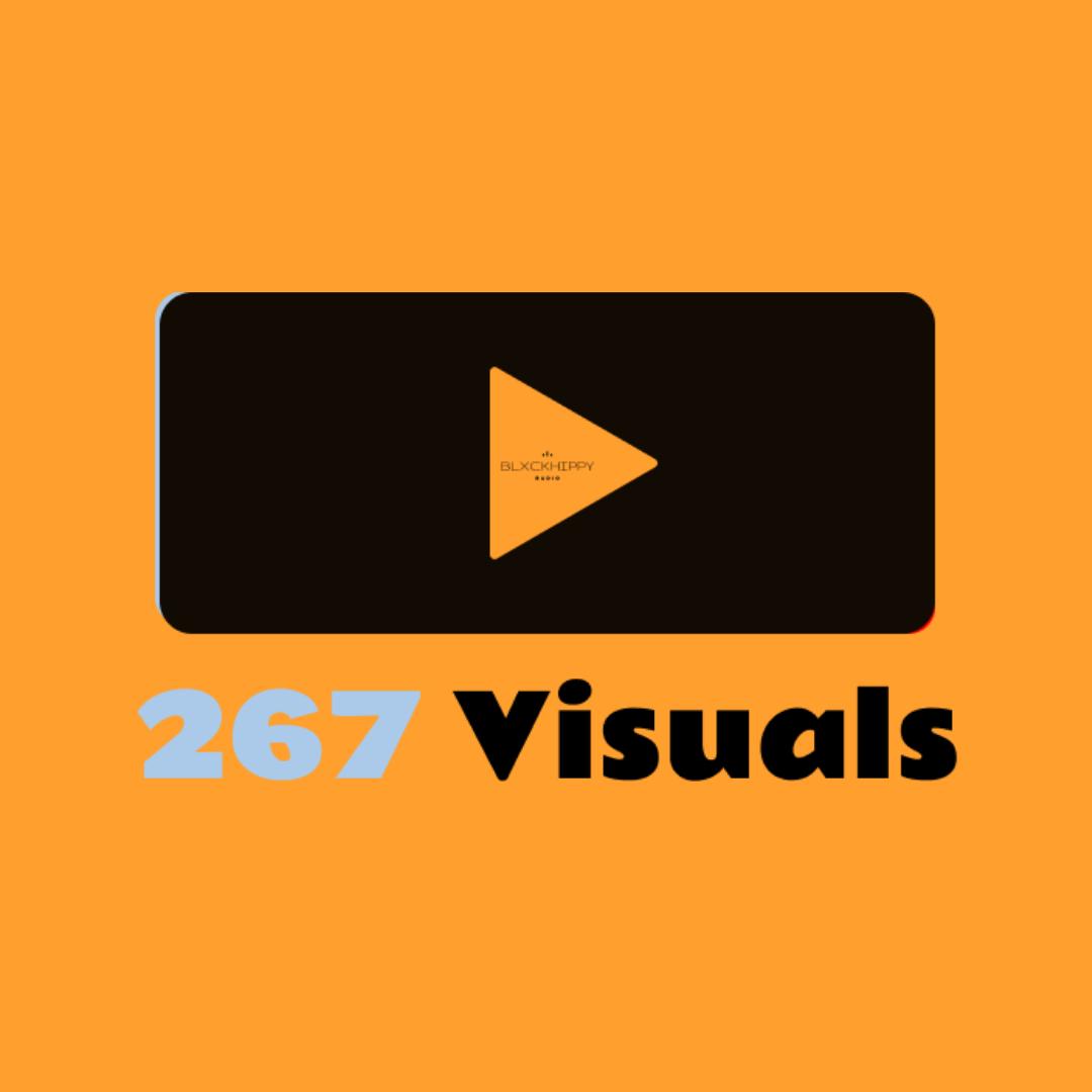 267 VISUALS
